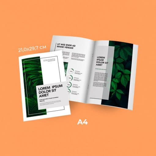 Meilleur rapport qualité/prix rendu qualitatif et professionnel A4 2 piques metal 1 4